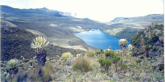 Encontraron a 4 turistas y un guía perdidos en el parque Los Nevados