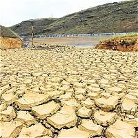 Hay pérdida total de cultivos en Capitanejo por la sequía
