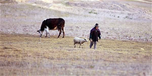 Tres ministros explican la gravedad de la sequía en el país