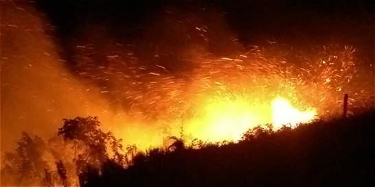 Incendio forestal consume vegetación en Sierra Nevada