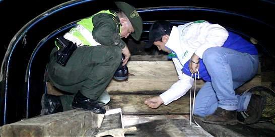 Capturan a 4 hombres por delitos relacionados contra el medioambiente
