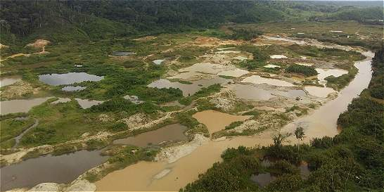 Hallan cinco minas ilegales en reserva forestal del sur de Bolívar