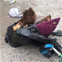 Por robar restos humanos, capturaron a un hombre en La Dorada (Caldas)