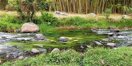Por falta de agua, en Salento buscan otras fuentes hídricas