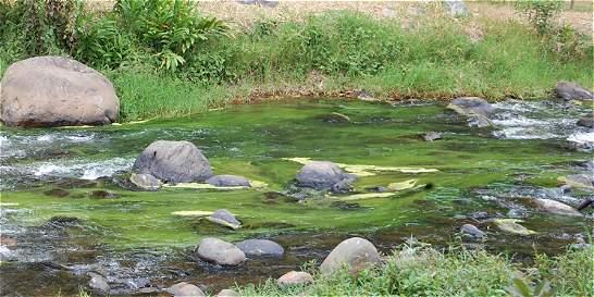 Declarar calamidad por problema de agua, única salida para Salento