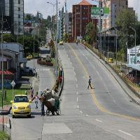 En Pereira y otros tres municipios de Risaralda guardarán el carro hoy