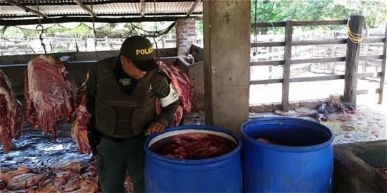 Contrabando de carne persiste en la frontera con Venezuela