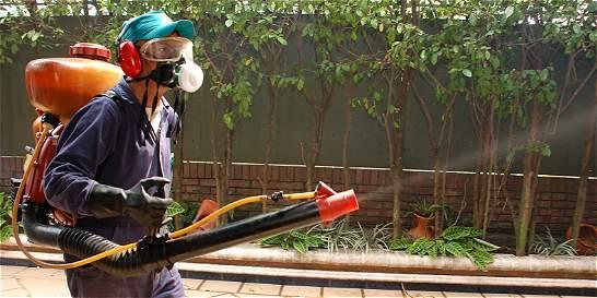Aplican medidas para atacar enfermedades por vectores en el Catatumbo