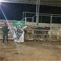Destruyen centro de sacrificio animal en zona rural de Cúcuta