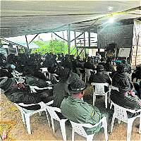Profesores universitarios formarían a exguerrilleros de las Farc