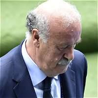 Vicente del Bosque anunció su salida de la selección española