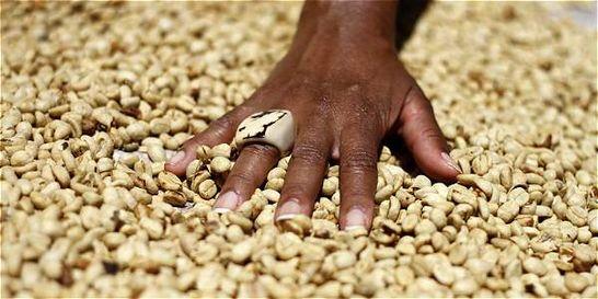 Producción cafetera de Colombia creció 18 por ciento a julio