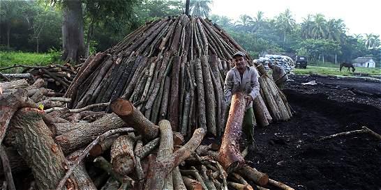 Carbón vegetal: un empujón dentro de la deprimida agricultura cubana