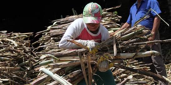 El lío del azúcar unió a sindicalistas y patronos