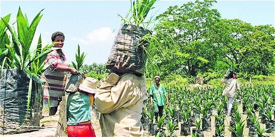 Analfabetismo, característica que prevalece en las mujeres del campo