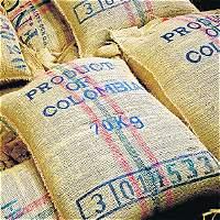 El fenómeno del Niño dejará pérdidas por $ 0,5 billones al café