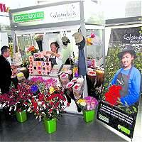 Los floricultores reactivan estrategia para atender al mercado local