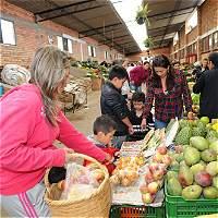 'El agro fue el que más jalonó una menor inflación': ministro Iragorri