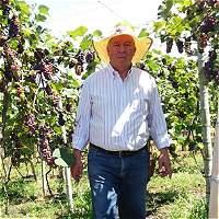 'De 60 millones de pesos, voy a pagar 45': Norberto Palomino