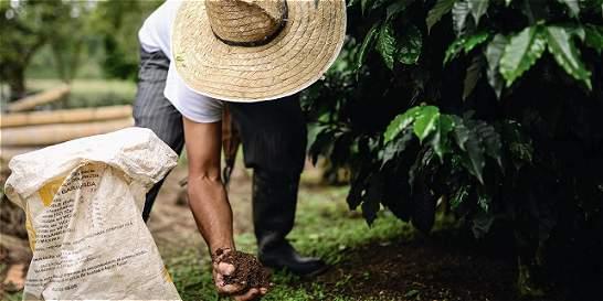 Campesinos asociados y capacitados, el reto del agro en Colombia