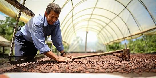 Alianzas entre campesinos mejoran la comercialización de productos