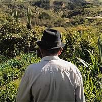 El mayor reto de la paz es el acceso a las tierras