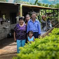 Seis apuestas de paz para el sector rural