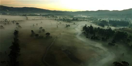 Solo el 2 % del área cultivada en Colombia está asegurada