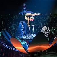 Así es el homenaje de Cirque du Soleil a Soda Stereo