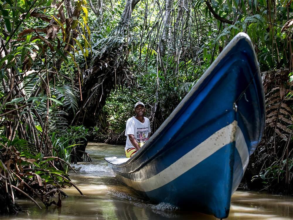Los hidrosenderos ecológicos de Bocas del Atrato, en Turbo (Antioquia), ofrecen la oportunidad de escuchar los latidos de la naturaleza.