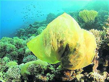 ¿Podremos limpiar el plástico del océano?