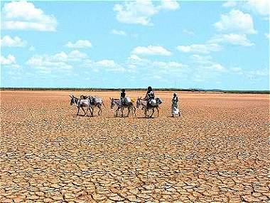 En el 2100, la mitad del planeta podría convertirse un desierto
