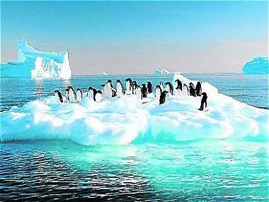 La Antártida puede perder el 85 % de su capa de hielo
