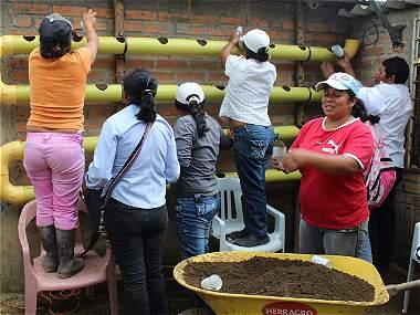 Cerrillos, el rincón del Cauca que se adapta al nuevo clima