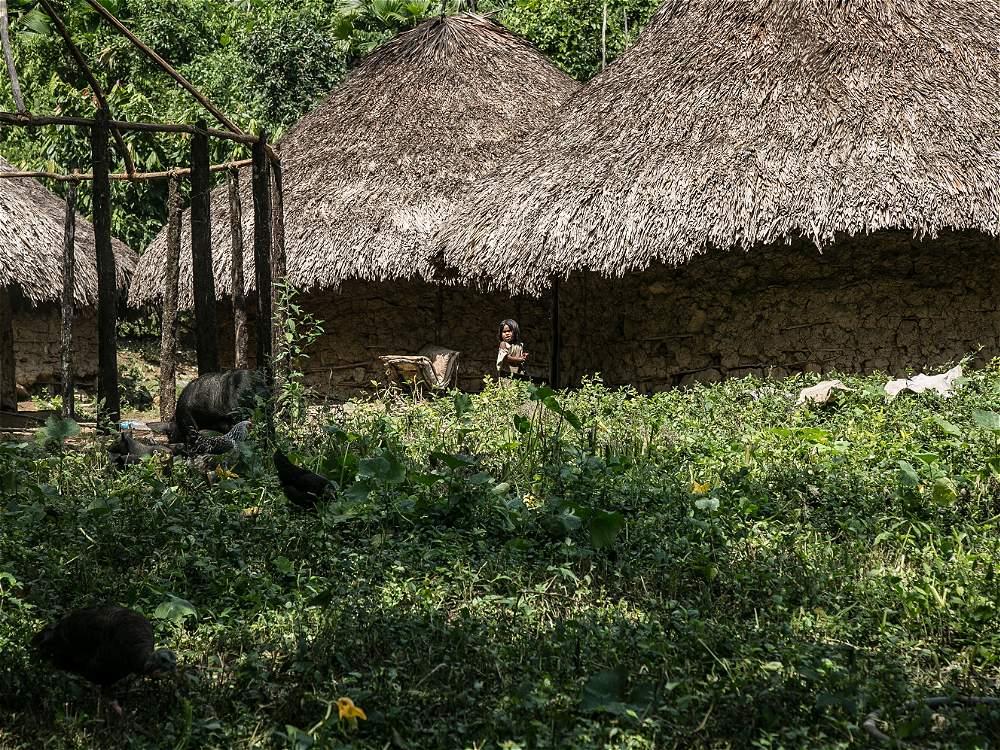 La Ciudad Perdida se encuentra en territorio Kogui, pueblo descendiente de los Tayronas.