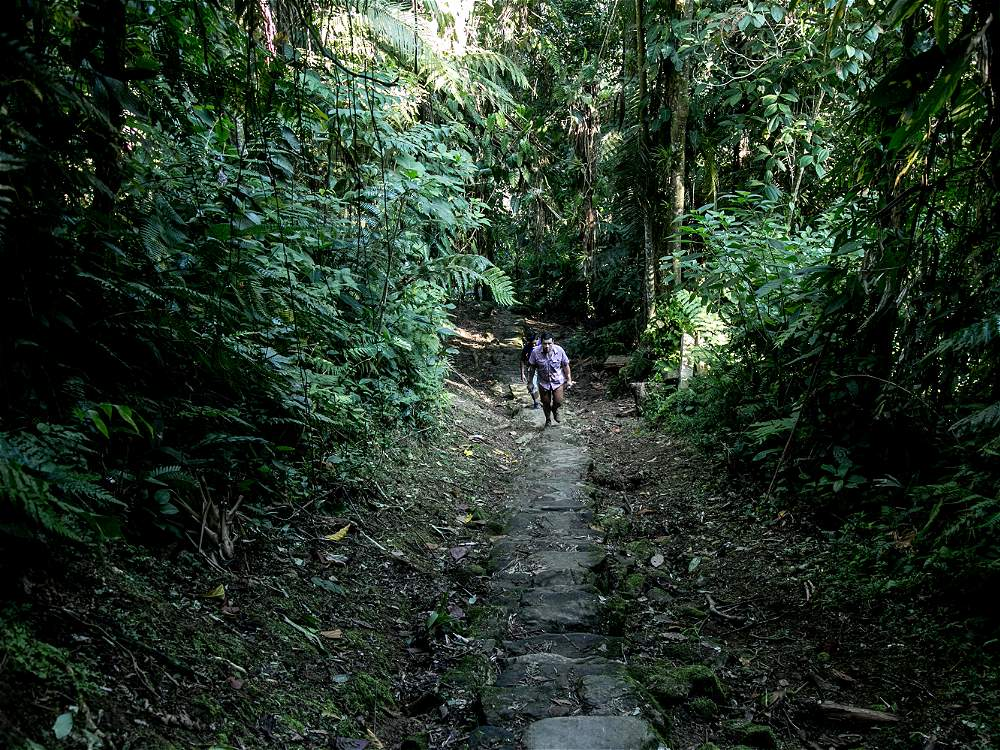 Sólo se puede acceder a la ciudad subiendo 1.200 escalones de piedra cubiertas de musgo del río Buritaca.