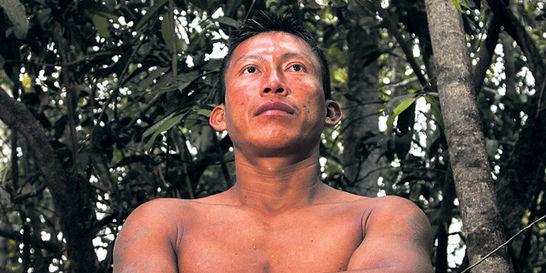 La selva donde vive el indígena joven de 'El abrazo de la serpiente'