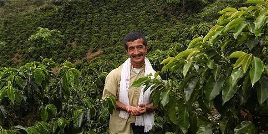 Los cultivadores del café de la reconciliación