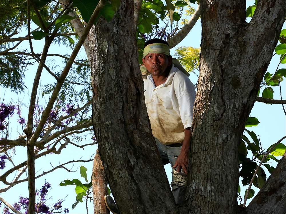 Rudy Óscar Romero, habitante de Lagarto Cocha, tiene un rol especial en su comunidad: es el guardián de la selva.