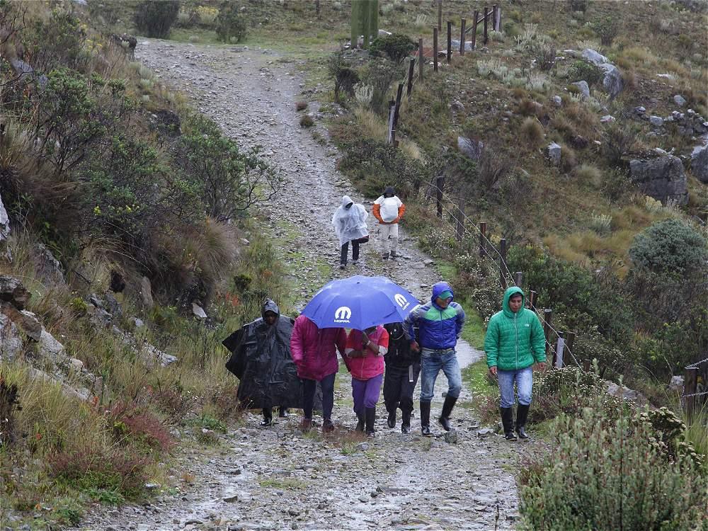 Un grupo de personas camina por un sendero del parque.