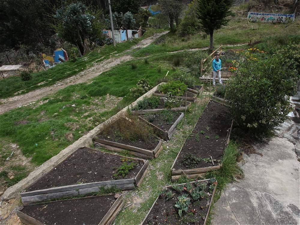 La comunidad de los cerros tiene sus propios cultivos colectivos de los que todos se surten.