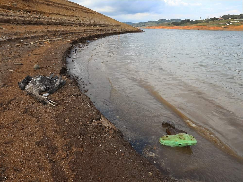 Las impactantes imágenes que deja la sequía en el Lago Calima