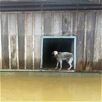 Chocó inundaciones