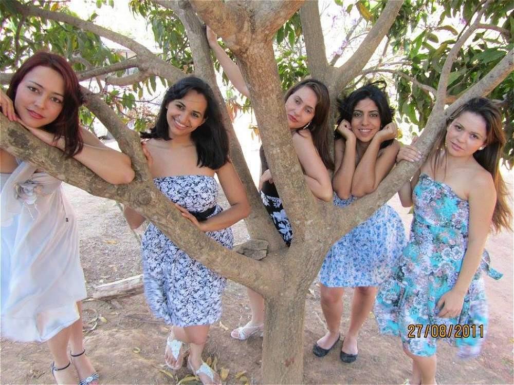 noiva do cordeiro brazil