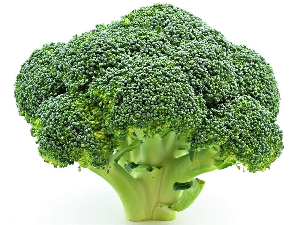 Fotos los alimentos m s y menos nutritivos galer a de - Fotos de comodas ...