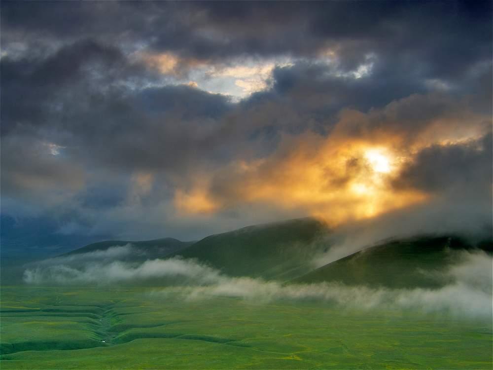 las mejores fotos del mundo al natural
