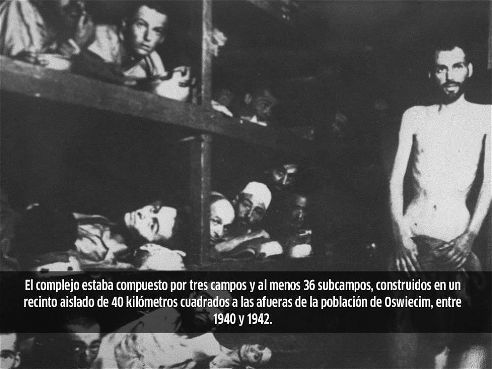 Algunos datos de Auschwitz, el campo de exterminio donde murieron más un millón de personas