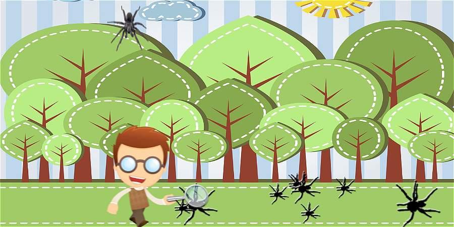 El biólogo que convirtió las arañas en juegos de mesa