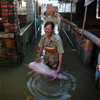 Fuertes lluvias de esta semana dejan más de 200 muertos en China
