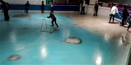 Parque temático se disculpa por congelar 5.000 peces en pista de hielo